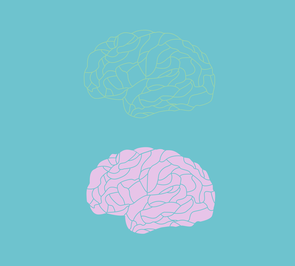 A yellow brain and a pink brain against a blue background