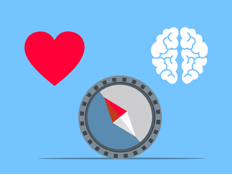 illustration of a compass with a heart on one side and a brain on the other